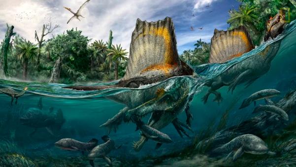 La nueva reconstrucción de Spinosarurus aegypticus. Imagen: National Geographic
